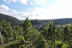 nahetal-weinlage-oberhausen